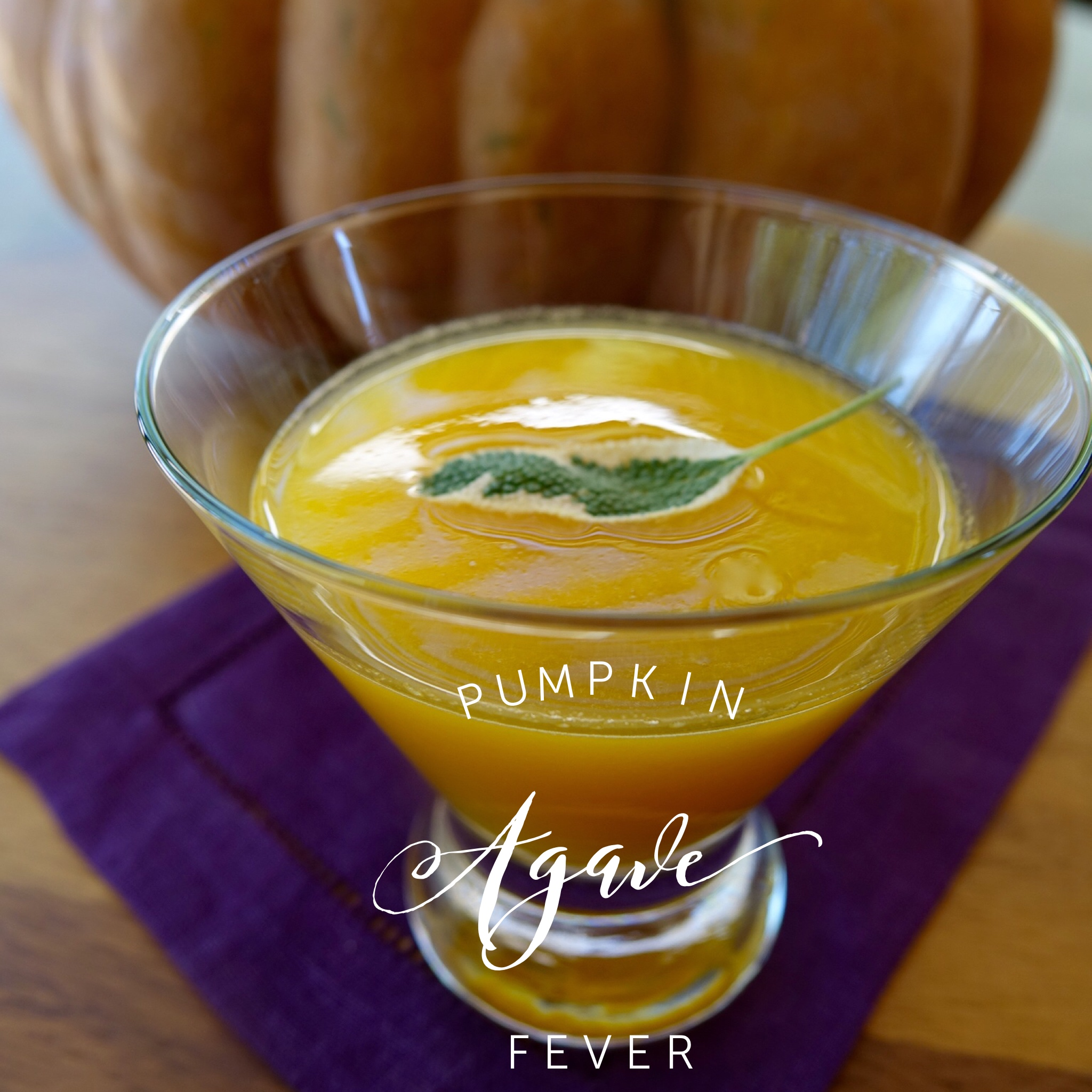 Pumpkin Agave Fever